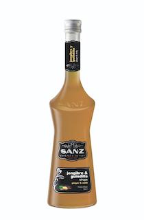 Ingwer-Chili-Sirup-Sanz-main